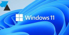 WF Windows 11 logo