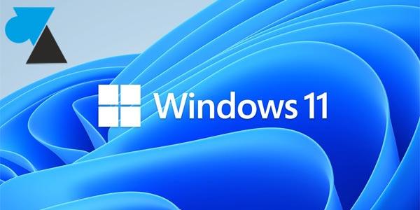 Windows 11 : voir l'adresse IP