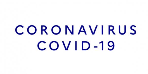La pandémie du coronavirus expliquée simplement